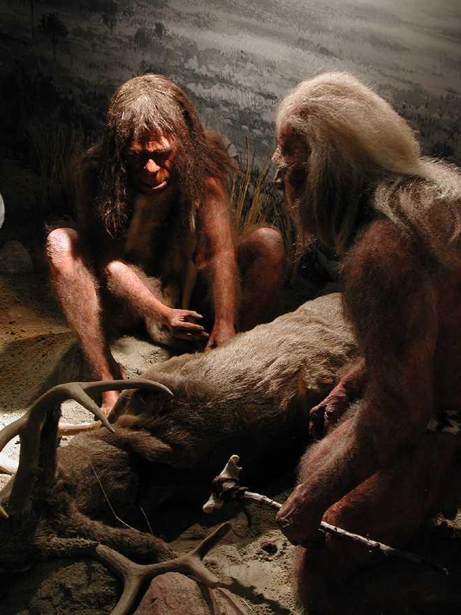 Cavemen Commercial Mannequins